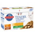 SCIENCE PLAN Feline Kitten Poulet & Dinde 12x85g