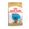 ROYAL CANIN Berger allemand Junior