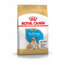 ROYAL CANIN Bulldog anglais Junior