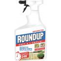 RoundUp Destructeur Algues Et Depot Verts 1L