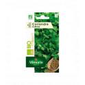 Coriandre Bio SER2 Vilmorin