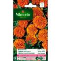 Oeillet D'Inde Globe Orange Vilmorin