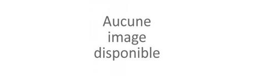 Mouches / Moucherons