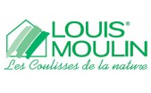 Louis Moulin